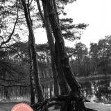 Heleen-Harmsen-Fotografie-7406
