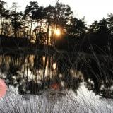 Heleen-Harmsen-Fotografie-7416